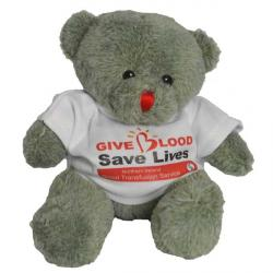 Cheap Stationery Supply of E136 Red Nose Bear with T Shirt 150mm Office Statationery