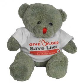 E136 Red Nose Bear with T Shirt 150mm