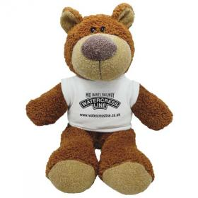E136 15 inch Buster Bear with T-Shirt