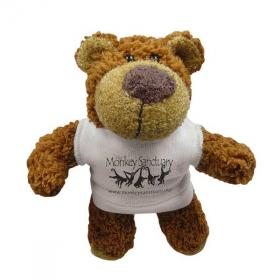 E136 5 inch Buster Bear with T-Shirt