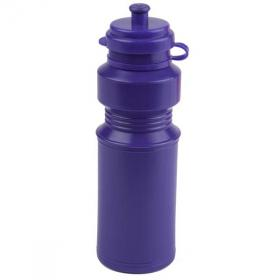 E133 250ml LUNCHBOXER Drinks Bottle